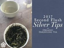 2017aki_silver01