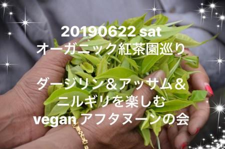 IMG_0064